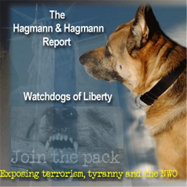 Hagmann and Hagmann Report