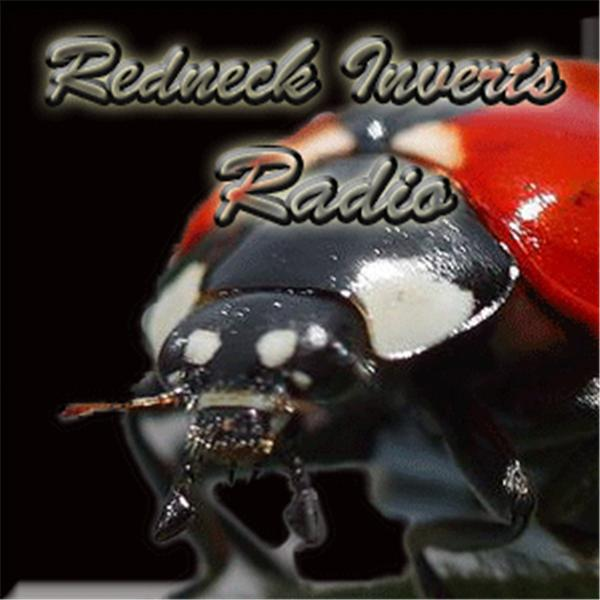 Redneck Inverts Radio
