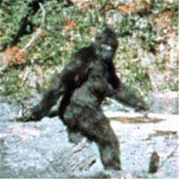 Bigfoot Ground Zero