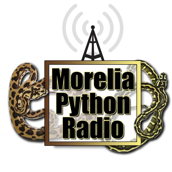 Moreliapythonradio