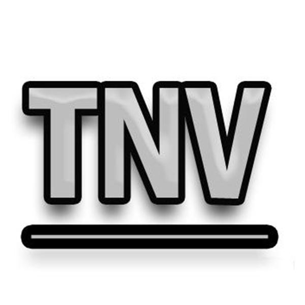 THENEVADAVIEW