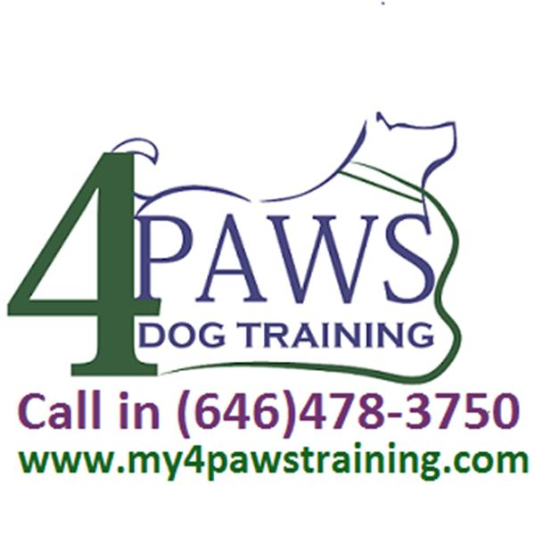 4 Paws Dog Training