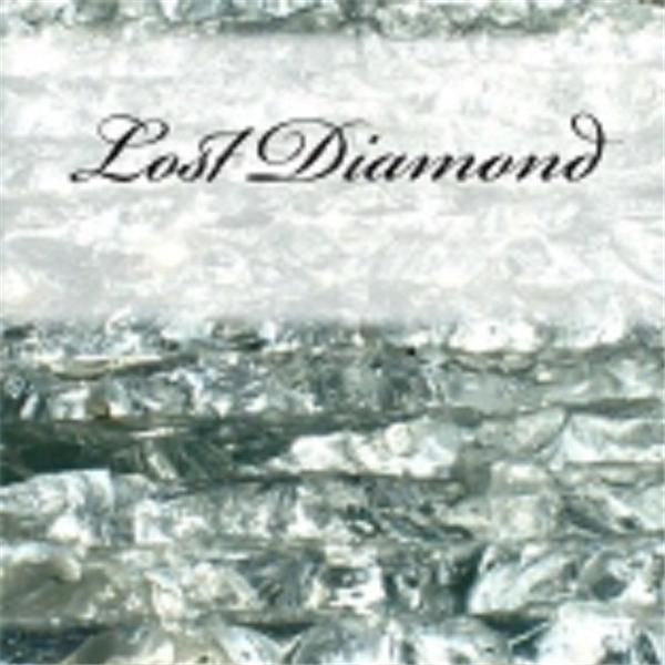 Lost Diamond by Bree Coleman