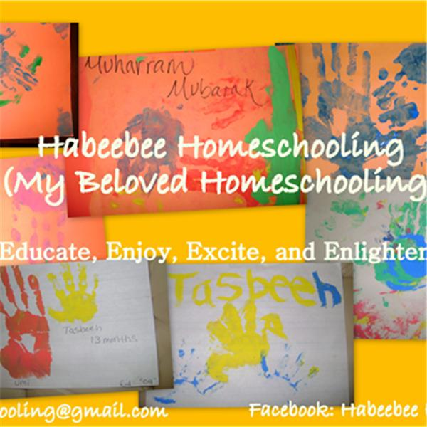 Homeschooling Mommy
