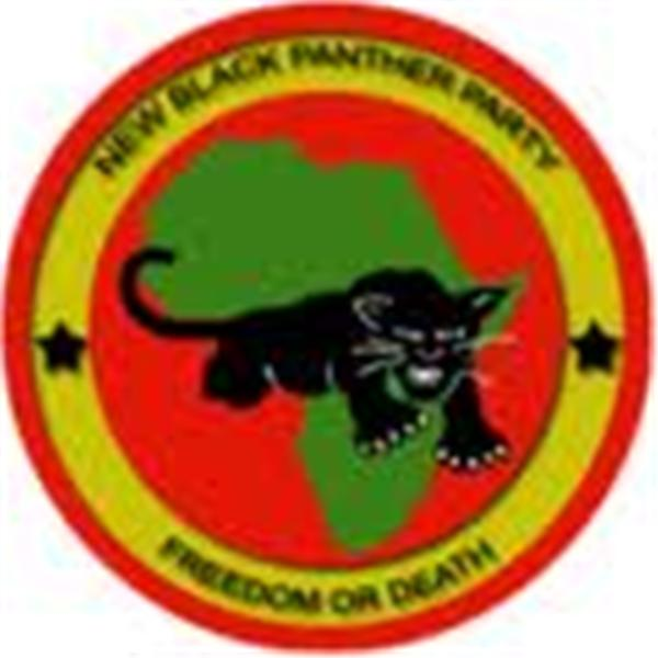 NBPP BLACK POWER RADIO