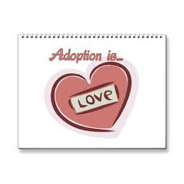 A new generation of adoptees