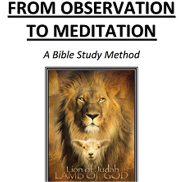 From Observation to Meditation