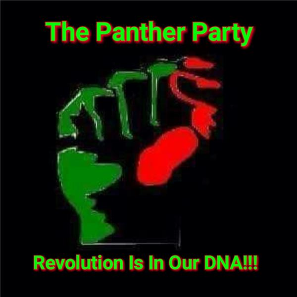 Panther Power Chat