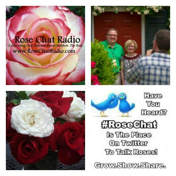 Rose Chat Radio