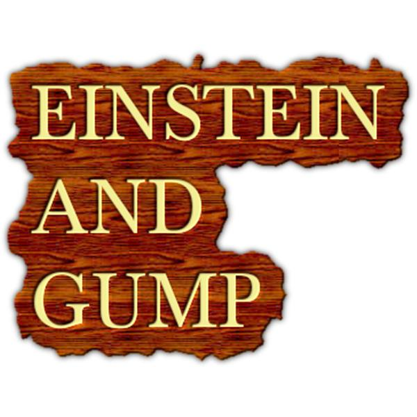 Einstein And Gump