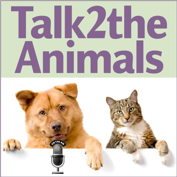 Talk2theAnimals