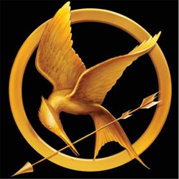 Everything Hunger Games