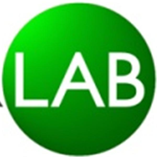 The Advisor Lab