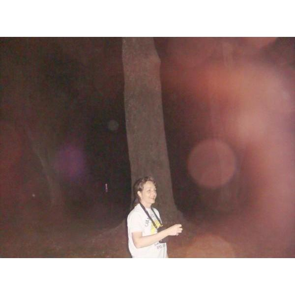 Ocala Ghost Walks